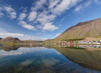 Top 5 things to do in Ísafjörður