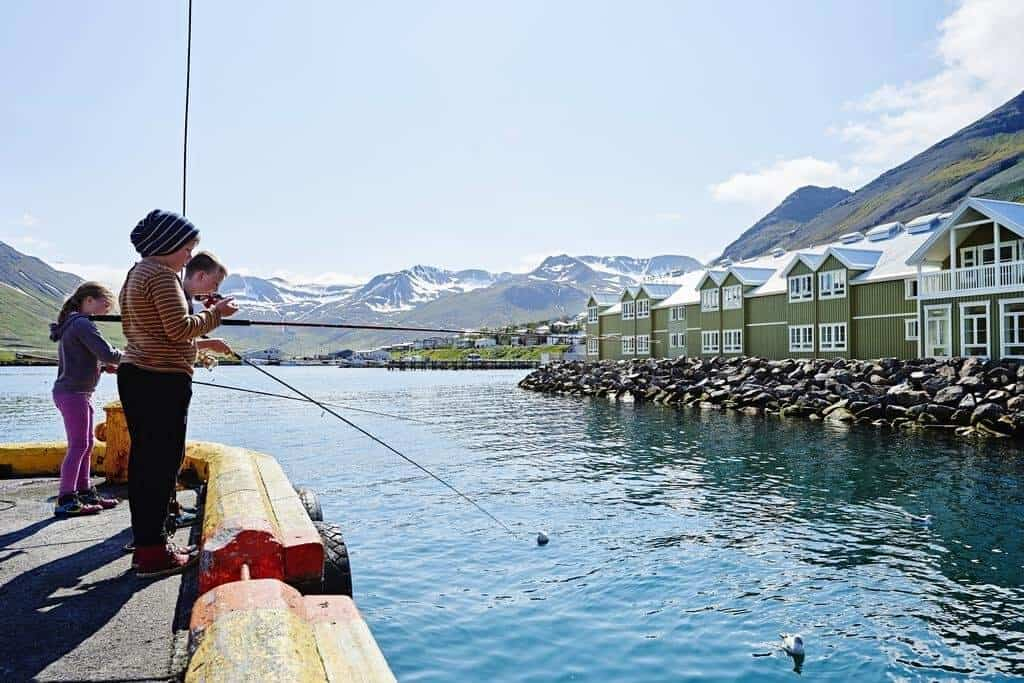 Best Hotels in Iceland