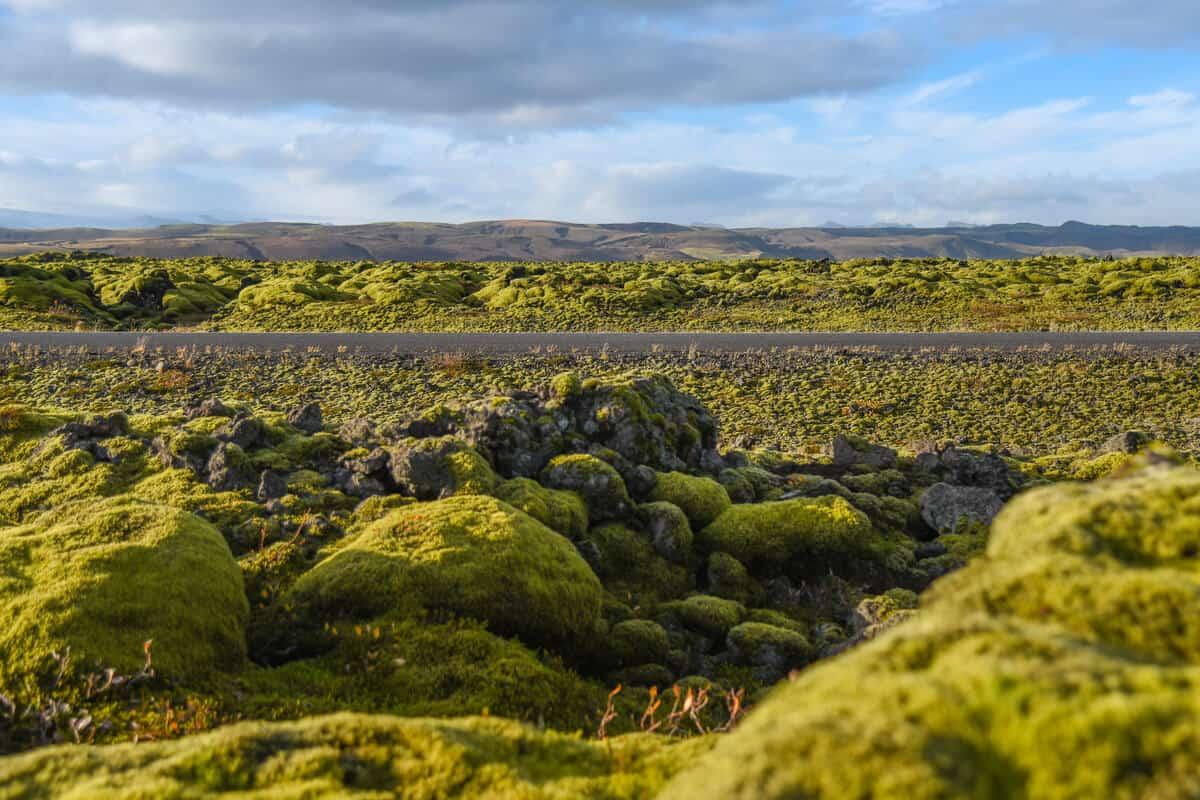 Eldhraun Lava Field in South Iceland