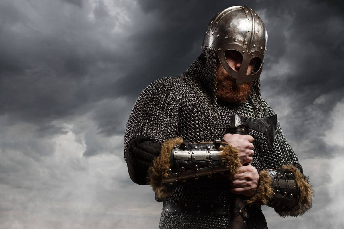 Iceland museums Viking warrior