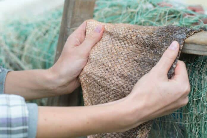 Fish leather from Iceland, a new way of suistainable business