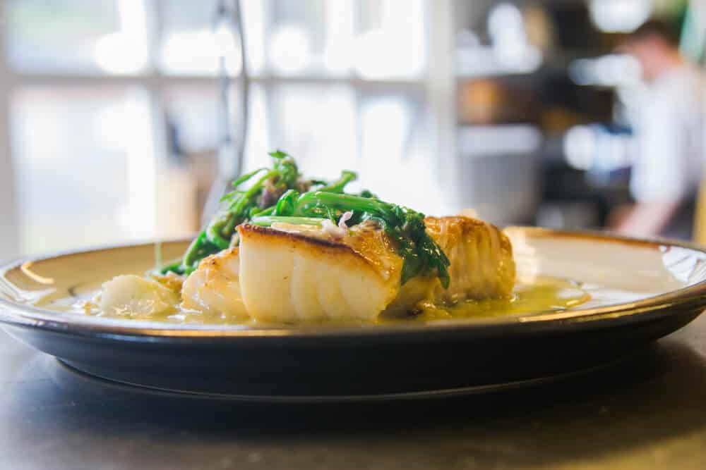 Pan-seared scallops at one of Reykjavik's best restaurants