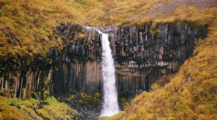 Svartifoss during Iceland's low season