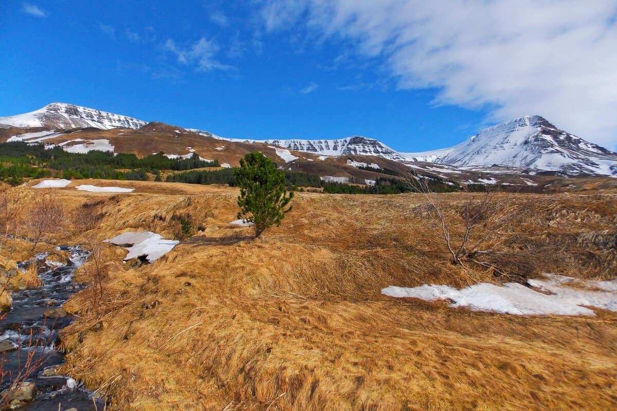 Mount Esja Reykjavik summer hiking